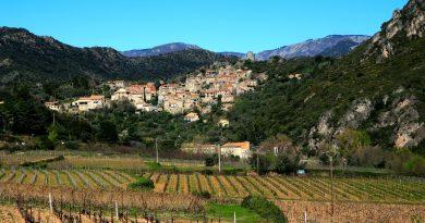 Quelles sont les meilleures régions viticoles à visiter à France ?