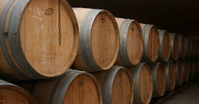 Grandes destinations : Pays des vins de Bordeaux