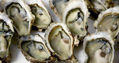 Les huîtres sont des aliments très appréciées par les Français.